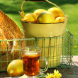 Early morning lemon tea in the garden — Stock fotografie