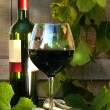Still life with red wine bottle and glass and grapevine — ストック写真