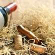 Bottle of red wine with corkscrew and packing straw — Foto Stock