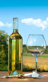 Empty glass with a bottle of white wine against blue sky — Stock Photo