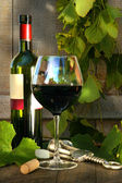 Still life with red wine bottle and glass and grapevine — Stock Photo