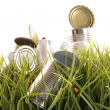 Stock Photo: Forgotten empty cans and bottles in grass