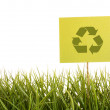 Green sign in the grass - Stock Photo
