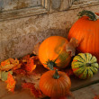 Stock Photo: Fall harvest/ Pumpkins and gourds at door