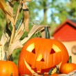 Autumn harvest with scarved pumpkin - Stock Photo
