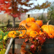 Foto Stock: Rake and pumpkins