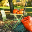 Raking autumn leaves — Stockfoto
