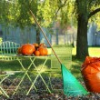 Stock Photo: Pumpkins on the table