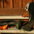 Rubber boots laying on porch steps - Stock Photo