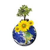 Earth with a tree and flowers isolated over a white background — Stock Photo