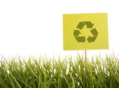 Green sign in the grass — Stock Photo