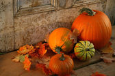 Fall harvest/ Pumpkins and gourds at the door — Stock Photo