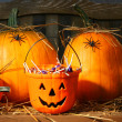 Bucket filled with halloween candy — Stockfoto #3293179