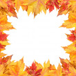 Royalty-Free Stock Photo: Colorful autumn leaves frame on white