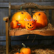 Stockfoto: Small and big pumpkins on an old bench