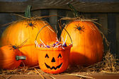 Bucket filled with halloween candy — Стоковое фото