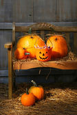 Small and big pumpkins on an old bench — Stok fotoğraf