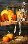 Colorful pumpkins and skeleton on bench — 图库照片