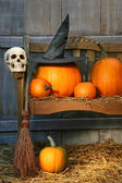 Big pumpkin with black witch hat and broom — Стоковое фото