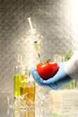 Hand holding tomato with syringe — Stock Photo