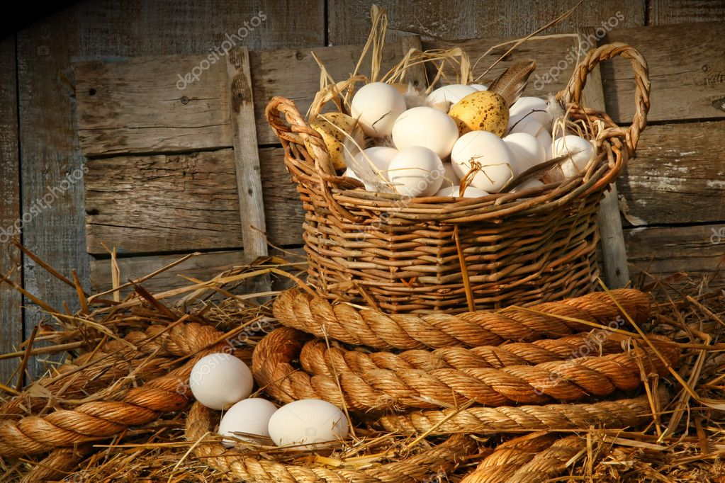 Basket of eggs on straw in the chicken coop — Stock Photo #3293223