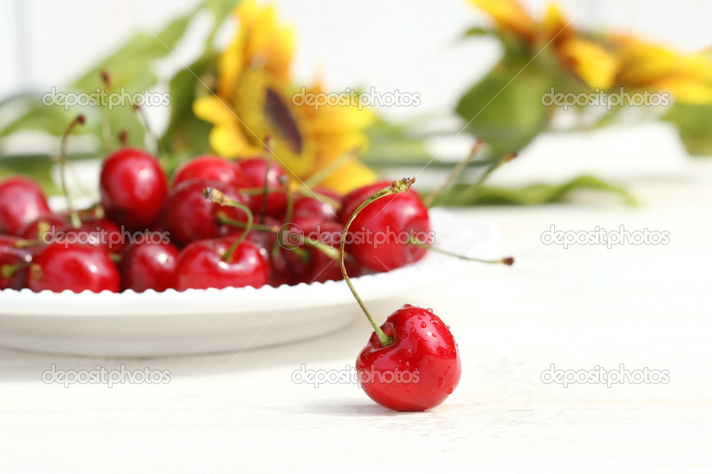 Cherries and sunflowers with white background — Stock Photo #3299982