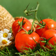 Summer tomatoes — Stock Photo