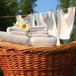 The fresh smell of linen — Stock Photo
