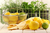 Lemons and herbs — Stock Photo