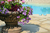 Sandals by the pool with large urn full of flowers — Stock Photo