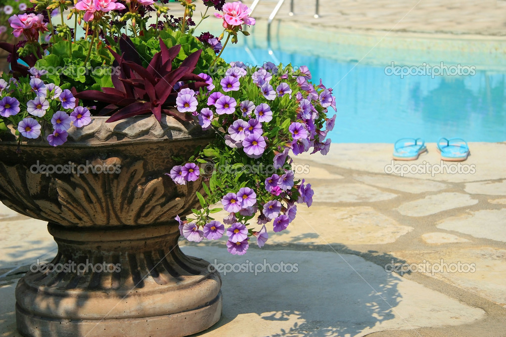 Sandals by the pool with large urn full of flowers  — Stock Photo #3300485