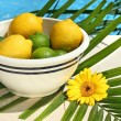 Lemons and limes in a bowl — Stock Photo