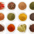 Variety of different spices in bowls — Stock Photo #3320106