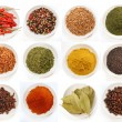 Variety of different spices in bowls - Stock Photo