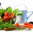 Fresh vegetables with watering can — Stockfoto