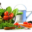 Fresh vegetables with watering can — Stok fotoğraf