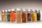 Bottles of colorful spices with grey — Stock Photo