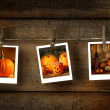 Halloween photos on distressed wood - Stok fotoğraf