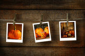 Halloween photos on distressed wood — Stock Photo