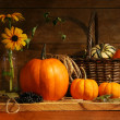 Autumn still life — Stockfoto #3389900