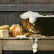 Old wash tub with soap on bench — Stock Photo