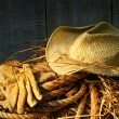 Straw hat with gloves on a bale of hay - Stockfoto