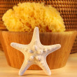 Little white starfish — Stock Photo