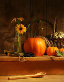 Fall still life — Stock fotografie