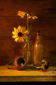 Yellow flower still life — Stock Photo