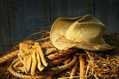 Straw hat with gloves on a bale of hay — Stock Photo