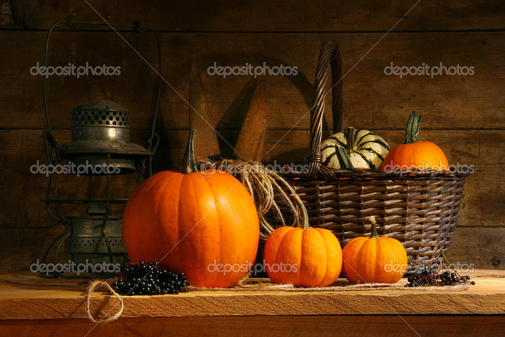 Basket on a shelf with gourds and pumpkins — Stock Photo #3389898