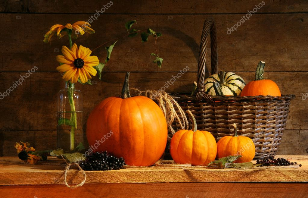 Autumn still life with pumpkins and flowers  Lizenzfreies Foto #3389900