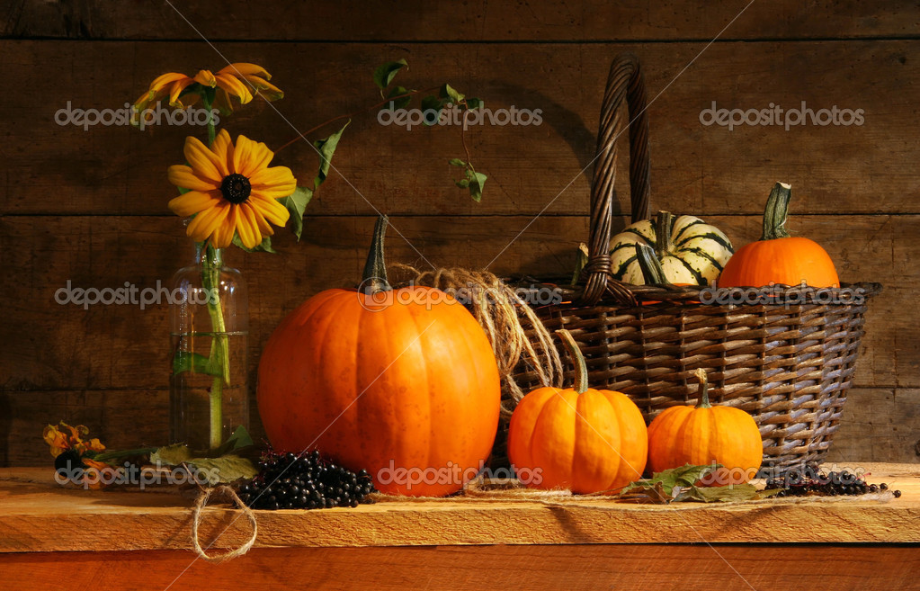 Autumn still life with pumpkins and flowers — Photo #3389900