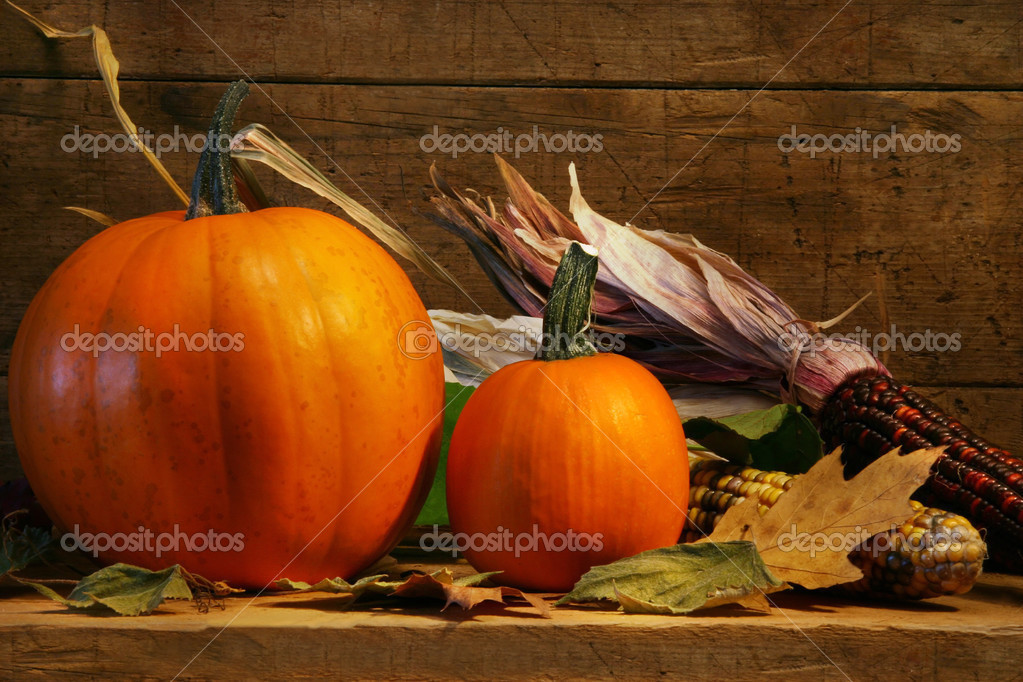 Two pumpkins on the shelf with autumn corn — Stock Photo #3389913